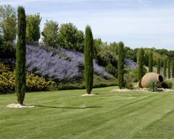 Aménagement jardin Casteau Mons. Un beau jardin pour l\'été !